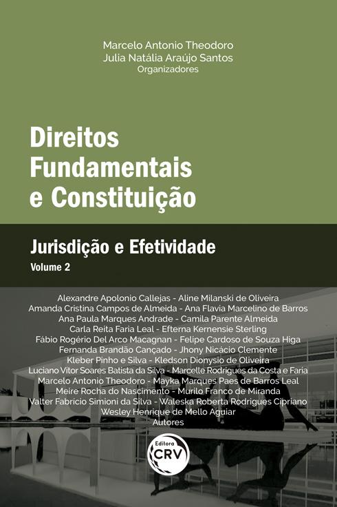 Capa do livro: DIREITOS FUNDAMENTAIS E CONSTITUIÇÃO: <br> Jurisdição e Efetividade <br> Volume 2