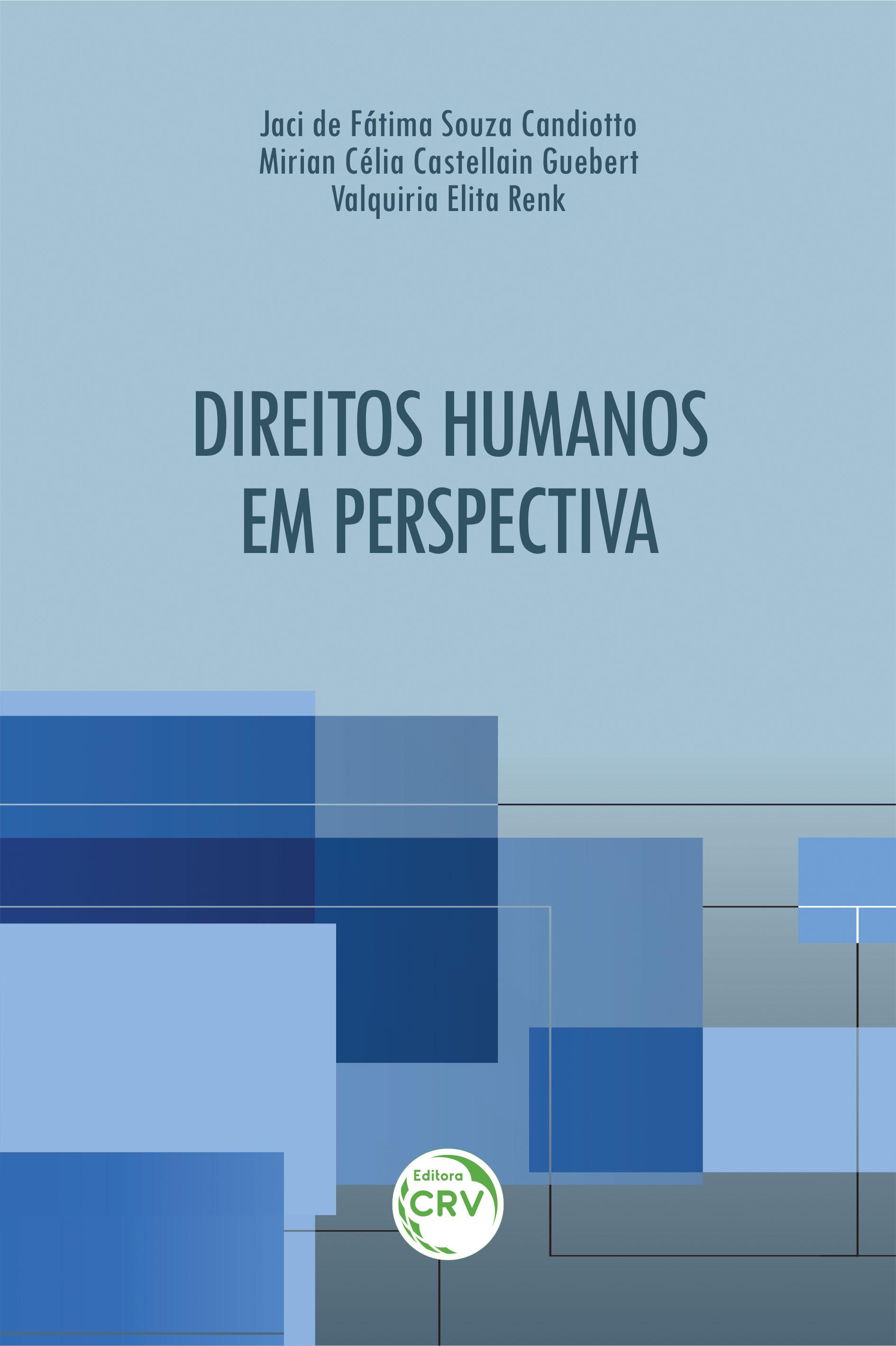 Capa do livro: DIREITOS HUMANOS EM PERSPECTIVA