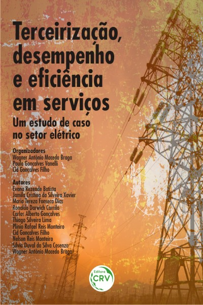 Capa do livro: TERCEIRIZAÇÃO, DESEMPENHO E EFICIÊNCIA EM SERVIÇOS: <br>um estudo de caso no setor elétrico