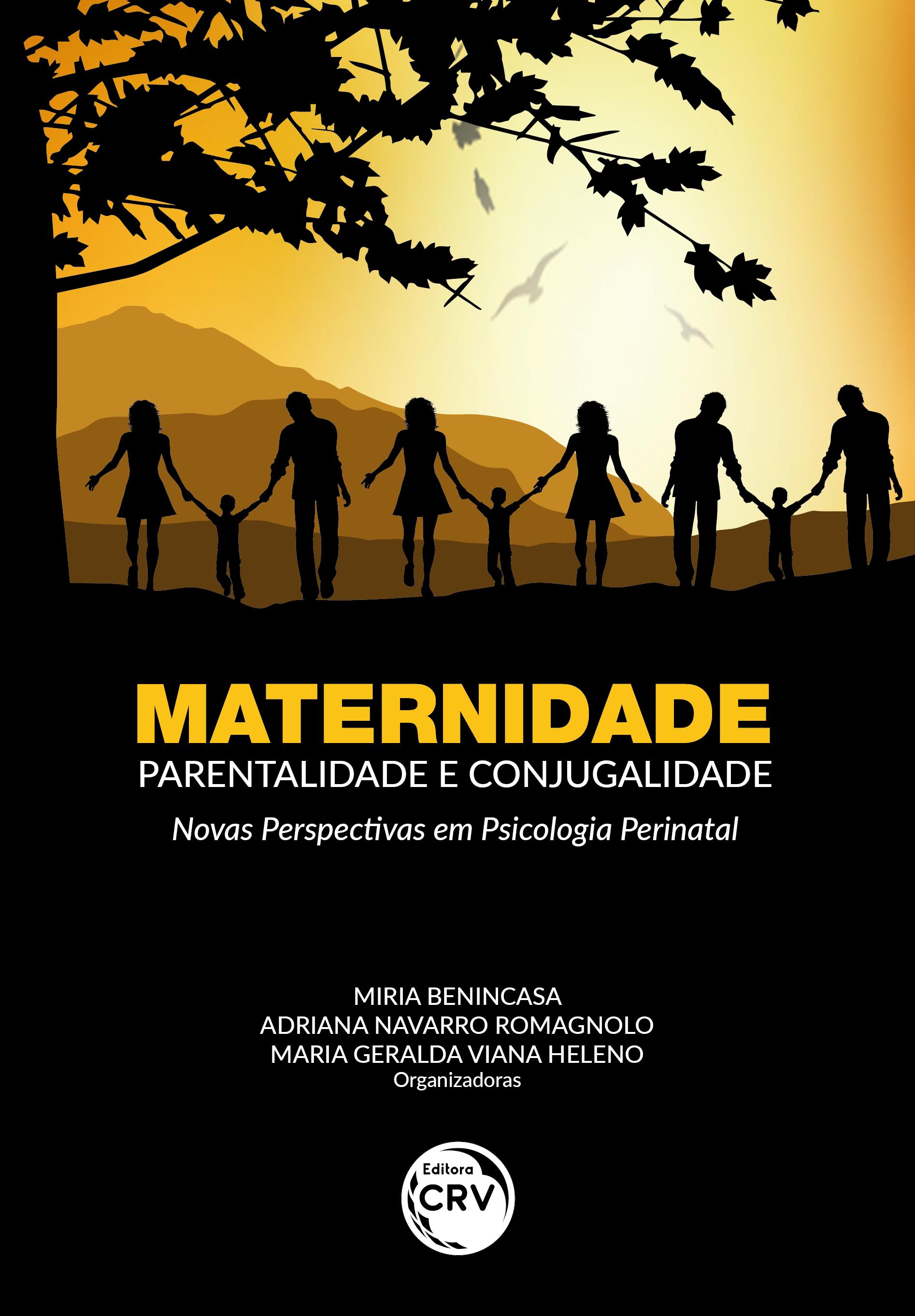 Capa do livro: MATERNIDADE, PARENTALIDADE E CONJUGALIDADE: <br> Novas perspectivas em psicologia perinatal