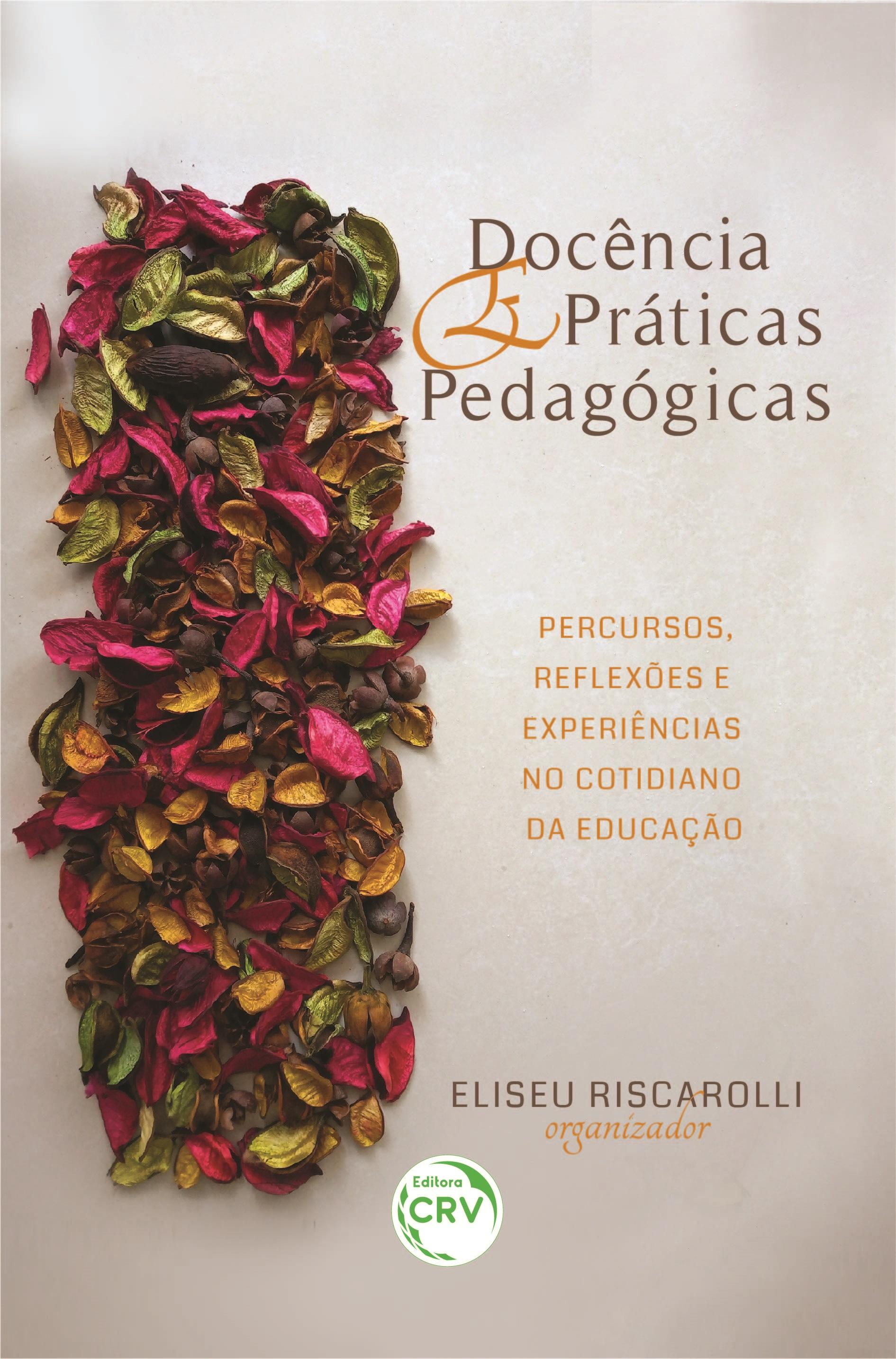 Capa do livro: DOCÊNCIA E PRÁTICAS PEDAGÓGICAS:<br> Percursos, reflexões e experiências no cotidiano da educação