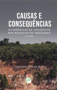 CAUSAS E CONSEQUÊNCIAS: <br>ocorrências de voçorocas nas rodovias do Amazonas<br> 2ª Edição