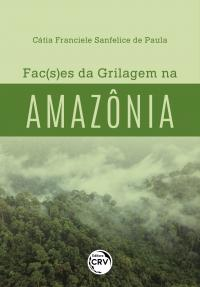 FAC(S)ES DA GRILAGEM NA AMAZÔNIA