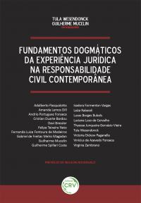 FUNDAMENTOS DOGMÁTICOS DA EXPERIÊNCIA JURÍDICA NA RESPONSABILIDADE CIVIL CONTEMPORÂNEA