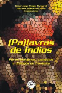 (PA)LAVRAS DE ÍNDIOS: <br>povos indígenas, caminhos e diálogos de fronteira