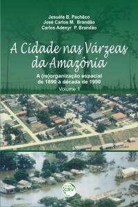 A CIDADE NAS VÁRZEAS DA AMAZÔNIA: <br>a (re)organização espacial de 1890 à década de 1990 <br>Volume 1